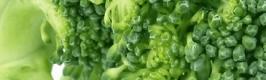 brocolli-small